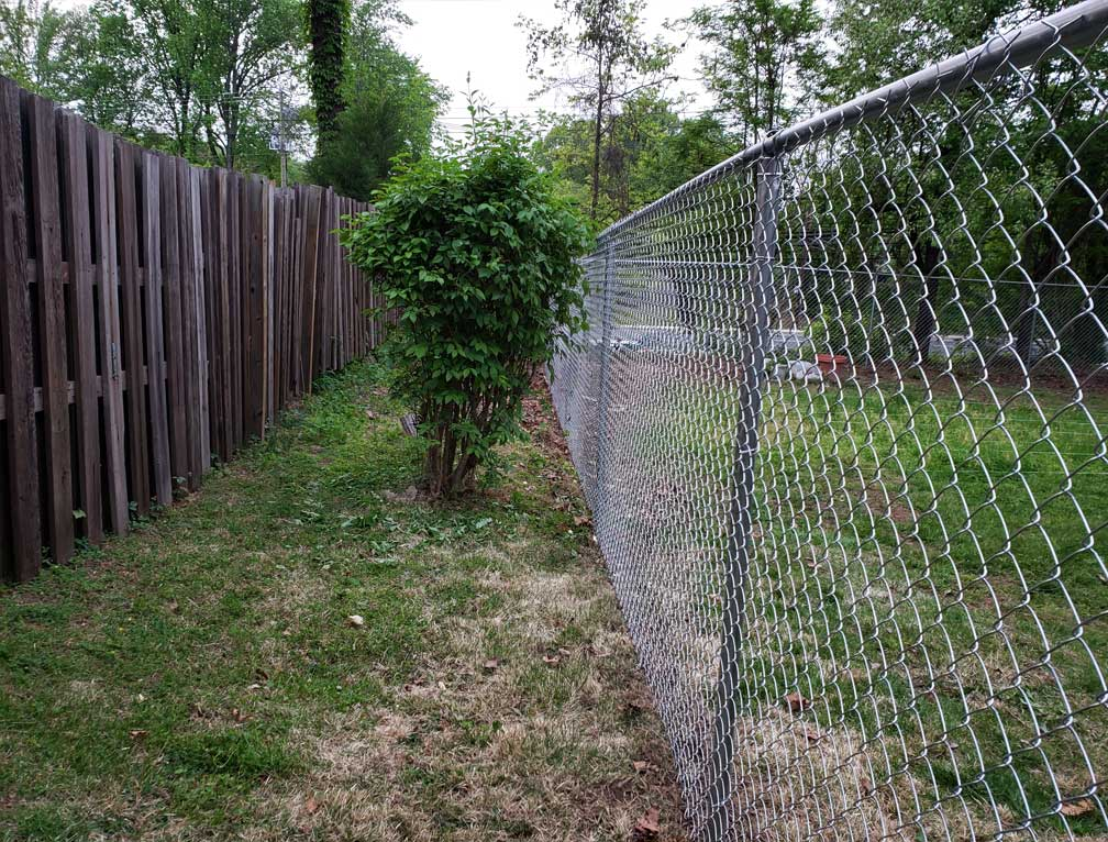 d fence pic