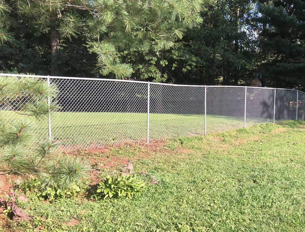 d fence picture